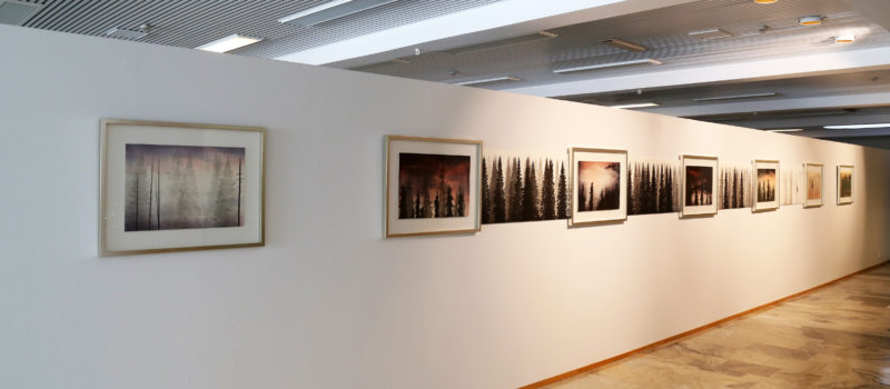 Aineen taidemuseon uusi näyttely Janne Laine: Näkyvän | Näkymättömän rajamailla